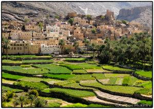 Het perfecte plaatje in Oman: de groene oase in Wadi Bani Awf