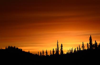 Fotografiereis Alaska & Yukon @ Yukon (Canada) & Alaska (VS)