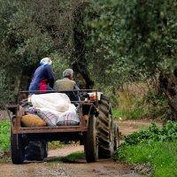 Workshop reportagefotografie op de Peloponnesos @ Xirokambi Sparti, Griekenland