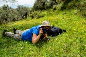 Macrofotografie op de Peloponnesos @ Xirokambi Sparta, Griekenland