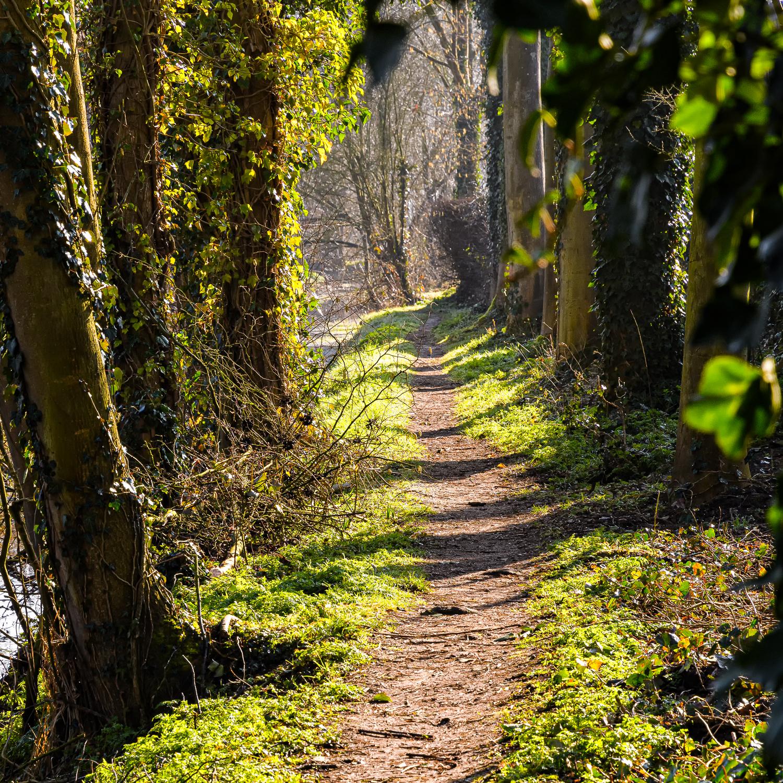 Wandelen over oude paden