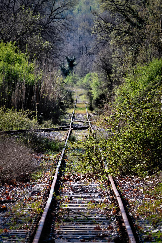 Overwoekerd spoor Peloponnesos