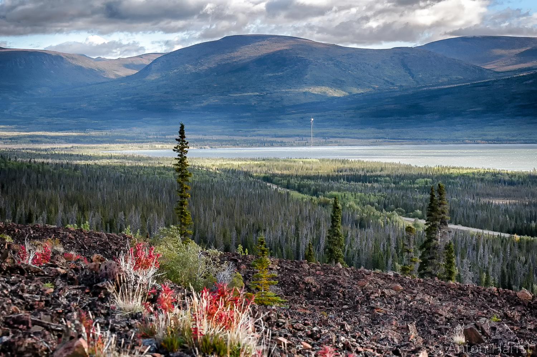 Kluane Lake Yukon